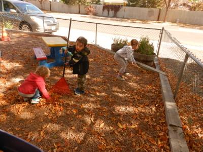 In the fall, we help rake the leaves.