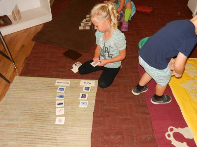 Children are taught to categorize objects and pictures in the science area.